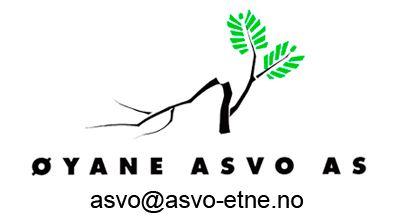 logo Øyane ASVO